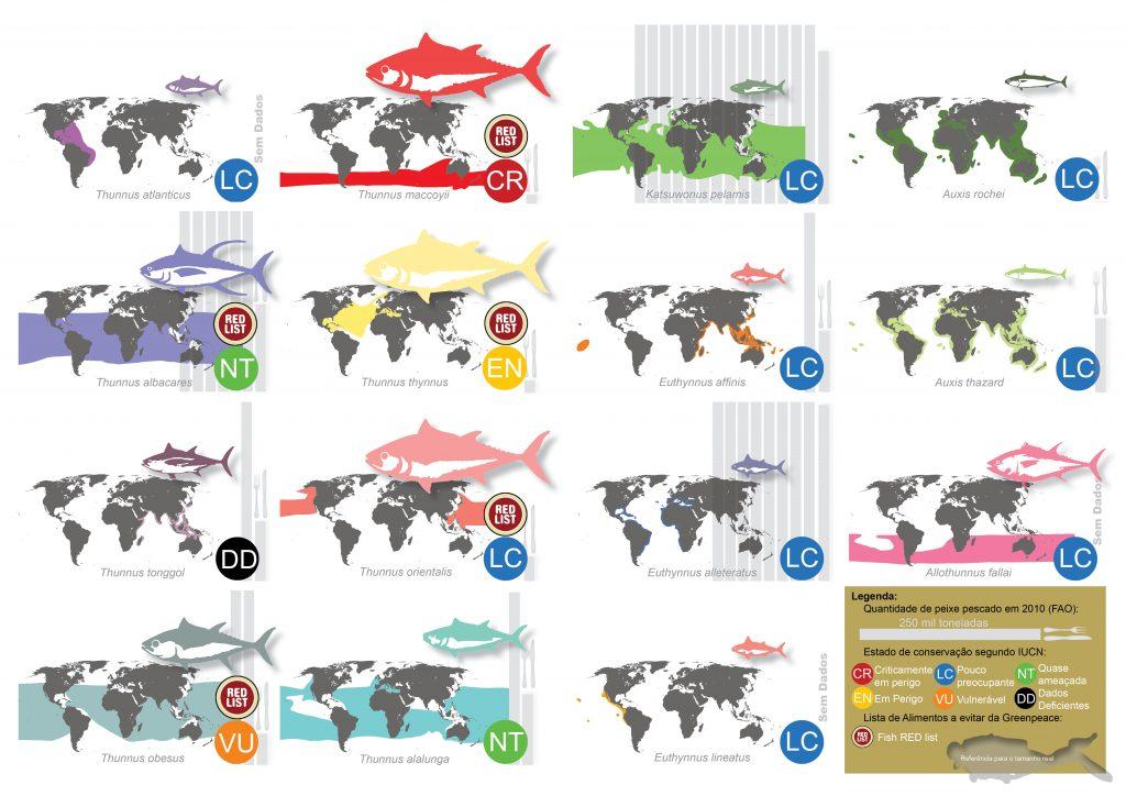 São reconhecidas 15 espécies de atum. Ocorrem no oceano Atlântico, Índico e Pacífico. Globalmente são capturadas mais de 4.000.000 toneladas por ano. ILUSTRAÇÕES Manuel Vieira DADOS www.fao.org/ e www.greenpeace.org/